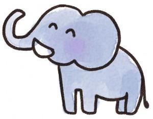 animal_elephant
