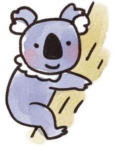 animal_koala